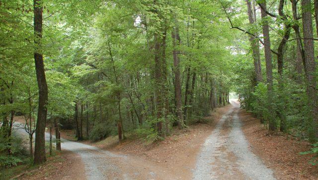 Life Path - 640 x 363